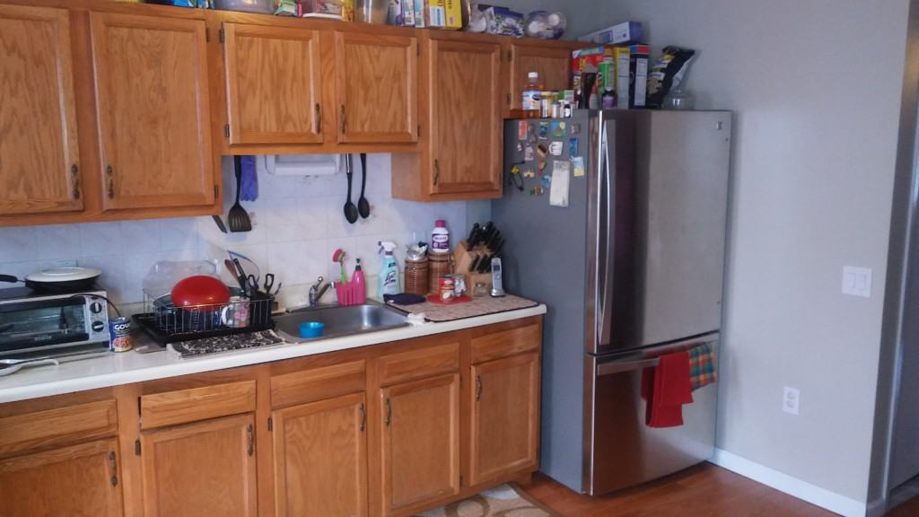 existing kitchen in Brooklyn