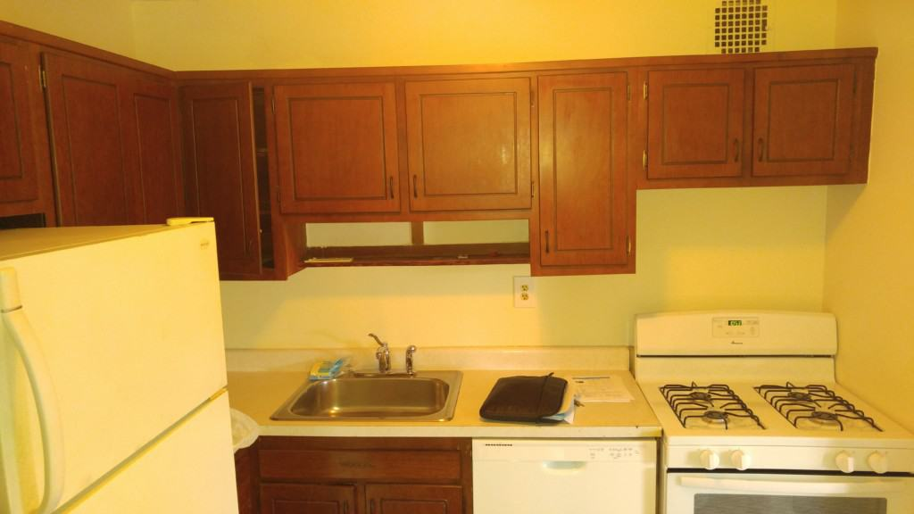 Harrison NY old existing kitchen